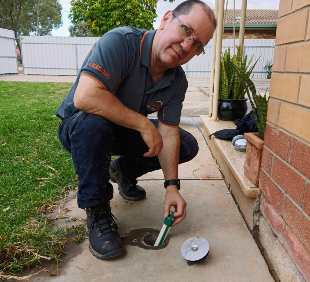 LEADING PEST MANAGEMENT ANDREW REED